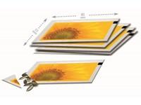 Samentütchen 80x55 mm, Zwergsonnenblume, Standardm