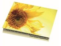 Klappkärtchen Sonne, 90 x 60 mm, Zwergsonnenlbume,