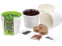 Kitchen Herbs Bio, Kresse, Basilikum, Zitronenmeli