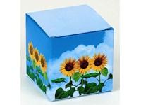 Würfel Sonnenblume, Zwergsonnenblume, 1-4 c Digita