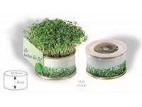 Mini Garten Vitamine 73 Øx38 mm mit Magnet, Kresse