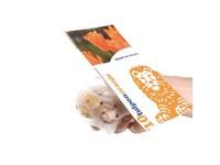 Beutel mit Blumenzwiebeln und personalisierter Kar
