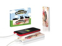 TravelCharger Flat