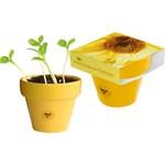 111954579753 - Pot Couleur 'Soleil', mini tournesol, incl. marqua
