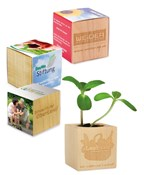 Houten plantenset mini